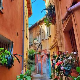 French Flower Street by Andrea Whitaker