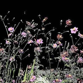 Flowers Dance At Night by Alida M Haslett