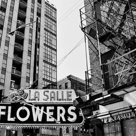 William Dey - FLOWERS FROM CHICAGO LaSalle Flowers