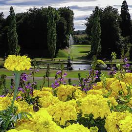 Flowery View Bicton Devon by Richard Brookes