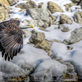 Flyin by Laura Hedien
