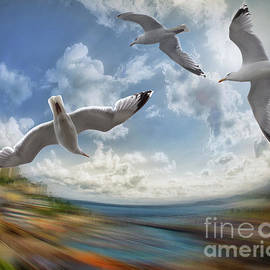 Flying Higher by Edmund Nagele