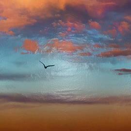 Flying Through The Sunset Sky  by Miroslava Jurcik