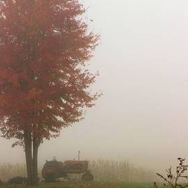 Fog on the Farm by Larry Kniskern
