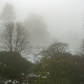 Foggy Day The View  From The Flat by Clive Beake