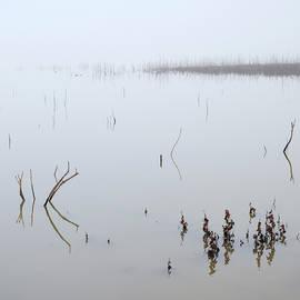 Guido Montanes Castillo - Foggy lake. Beautiful sunrise. Minimal.