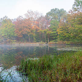 Foggy Morning at Sanctuary Pond II by Jeff Severson