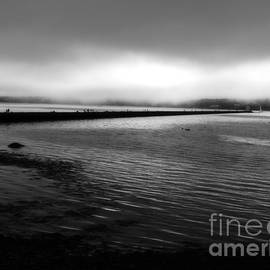 Foggy Morning by Marcia Lee Jones