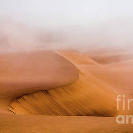 Foggy Namib Desert by Lyl Dil Creations