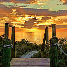 Follow The Gold by HH Photography of Florida