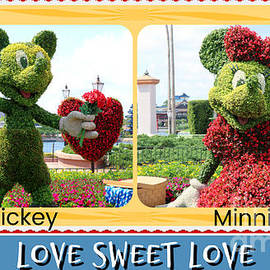 For The Love Of Minnie by Diann Fisher
