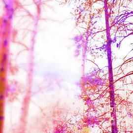 Forest in purple and orange by Blue Pearl Designs