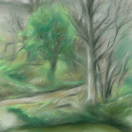 Forest Lane By A Pond by MM Anderson