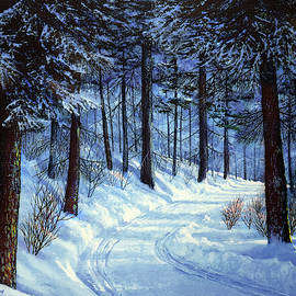 Forest Road by Frank Wilson