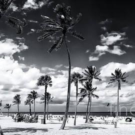 Fort Lauderdale Beach Park by John Rizzuto
