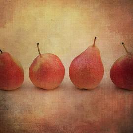 Four Pears Still Life by Terry Davis