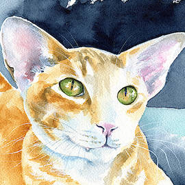 Fox Peterbald Cat Painting by Dora Hathazi Mendes