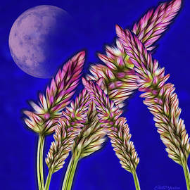 Fractal Wheat Under The Moon by Ericamaxine Price