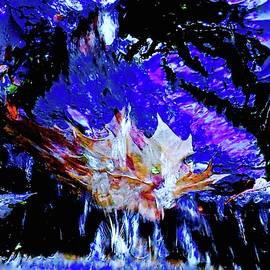 Fractured Rainbow Splash by Alida M Haslett