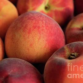 Fresh Peaches by Tracy Hall
