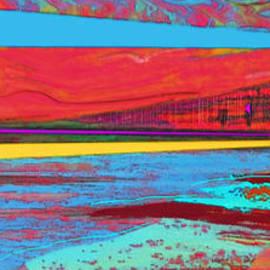 Friday Harbor Regatta No. 1 by Zsanan Studio