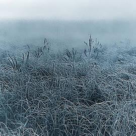 Frigid Morn by Jill Love Photo Art
