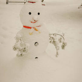 Claudia M Photography - Frosty the Snowman