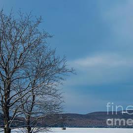 Alana Ranney - Frozen Lake