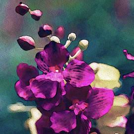 Fuchsia Pink Vanda Orchid by Susan Maxwell Schmidt