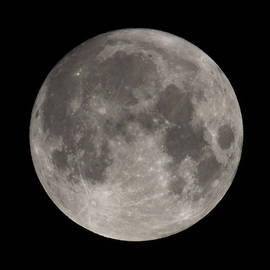 Full Moon August 2019 Square by Terry DeLuco