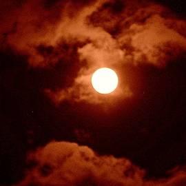 Full Moon Series - 1 by Arlane Crump