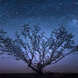 Galatika by Mark Andrew Thomas