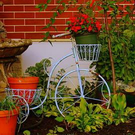 Garden Bike by Kathy Barney