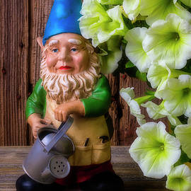 Garden Gnome With Petunias by Garry Gay