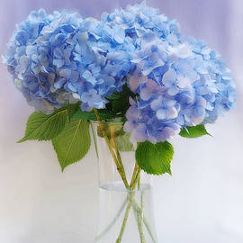 Garden Hydrangea Bouquet by Marilyn DeBlock