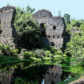 Garden of Ninfa Ruins by Sally Weigand