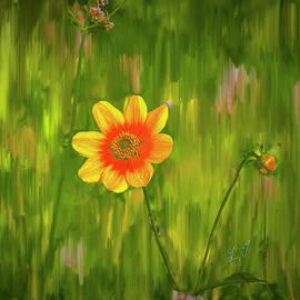Garden tales #j1 by Leif Sohlman