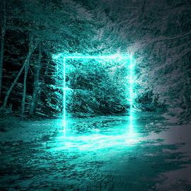 Gate by Oleg Ver
