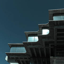 Geisel Library Cold Tone