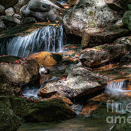 Gentle Waterfall by Linda Howes