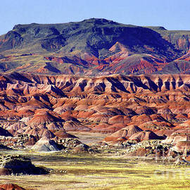 Georgia O'keefe Country - The Painted Desert by Douglas Taylor
