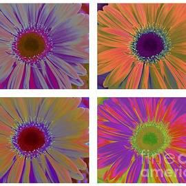 Colorful Gerbera Daisies Pop Art by Dora Sofia Caputo Photographic Design and Fine Art