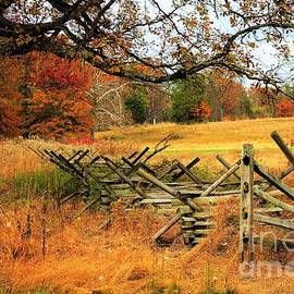 Gettysburg Scenery by Suzanne Wilkinson
