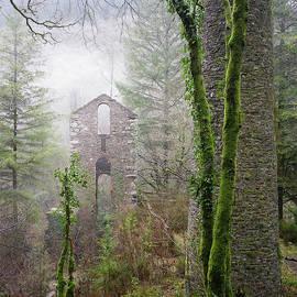 Richard Brookes - Ghostly Ruins Clitters Mine Gunnislake Cornwall