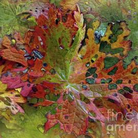 Glimpse Of Autumn by Kim Tran