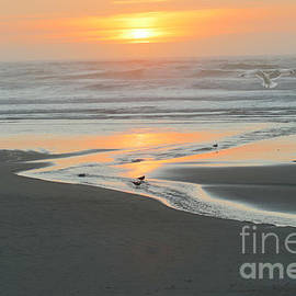 Glorious Evening on The Oregon Coast by Beverly Guilliams