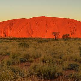 Glow of Uluru by Steve Luther