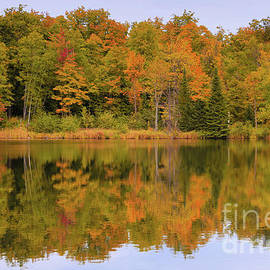 Golden Autumn Serenity by Rachel Cohen