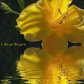 Golden flower with sparkles, reflected in the water. by Zenya Zenyaris