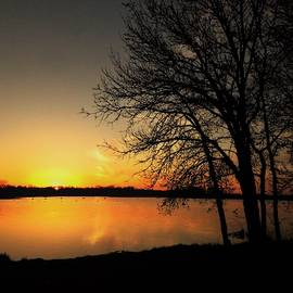 Golden Glow Sunrise  by Lori Frisch